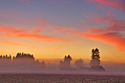 Dawn - Misty Country Morning by Sean Griffin