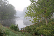 Morning Photos - Misty Creek 1 by Richard De Wolfe
