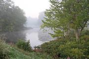 Richard De Wolfe - Misty Creek 1