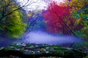 Philadelphia Digital Art Prints - Misty Creek Print by Bill Cannon