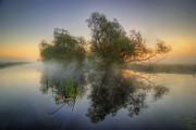 Popular Art Photos - Misty Dawn 2.0 by Yhun Suarez