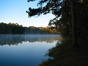 Misty Lake Print by Don L Williams