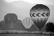 Balloon Fest Framed Prints - Misty Landings in Montone Framed Print by Kathleen Stephens