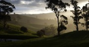 Gippsland Prints - Misty Print by Lee Stickels