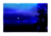 Moonlit Art - Misty Mangrove Moon Reflection by Mal Bray