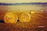 Bales Posters - Misty Morning in the Prarie Poster by Iris Greenwell