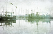 Margaret Hormann Bfa Framed Prints - Misty Morning on the Boat Harbour Framed Print by Margaret Hormann Bfa