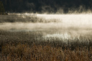 Kamloops Prints - Misty Morning Print by Peter Olsen