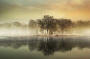 Gloucestershire Prints - Misty Reflections Print by A Goncalves