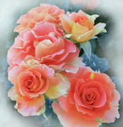 Get Well Wishes Prints - Misty Roses Print by Marna Edwards Flavell