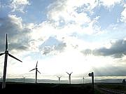 Misty Windmills Print by Rusty Woodward Gladdish