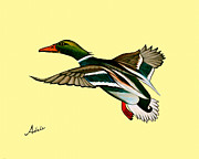 Ducks Paintings - Mitch  by Adele Moscaritolo