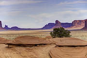 Monument Valley Prints - Mitchell Butte From Mystery Valley Print by Mike Herdering