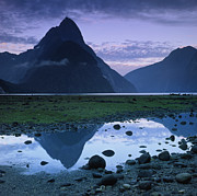 Puddle Prints - Mitre Peak Print by Atan Chua