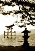 Miyajima Framed Prints - Miyajima Island Framed Print by Don Wolf