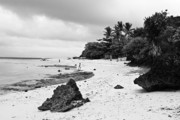 Cebucity Framed Prints - Moalboal Cebu White Sand Beach in Black and White Framed Print by James Bo Insogna