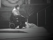 Disability Digital Art - Mobility by Lenore Senior