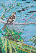 Singing Pastels Originals - Mocking Bird in the Spring by Dana Schmidt