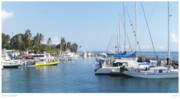 Lahaina Digital Art Prints - Modern Lahaina Harbor Print by Joseph Vittek