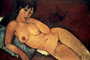 1917 Prints - Modigliani: Nude, 1917 Print by Granger