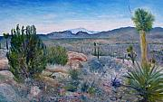 Enver Larney Art - Mojave desert with Mt San Jacinto California USA 2001   by Enver Larney