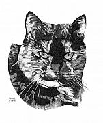 Stippling Framed Prints - Mokey Framed Print by Robert Morin