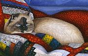 Tortie Prints - Molly - A Rescue Cat - Close Up Print by Carol Wilson