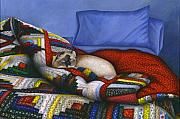Quilt Posters - Molly - A Rescue Cat Poster by Carol Wilson