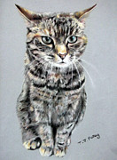 Cat Pastels - Molly 2 by Tanya Patey