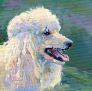 White Poodle Framed Prints - Molly Framed Print by Kimberly Santini