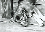 Charcoal Dog Drawing Drawings Posters - Molly Poster by Tom Hedderich