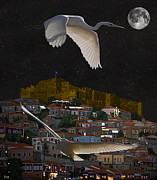 Greetings Card - Molyvos Lesvos Egrets by moonlight by Eric Kempson