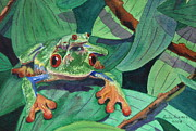 Red-eyed Tree Frog Painting Prints - Mom and Baby Frog Print by Anita Riemen