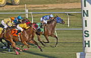 Trotting Photos - Moments by Betsy A Cutler East Coast Barrier Islands