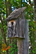 Birdhouse Photos Photos - Moms Birdhouse by Mark Hinrichs