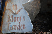 Kelly Digital Art Prints - Moms Garden Print by Kelly Rader