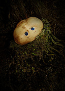 Tree Roots Photos - Mon Petit Chou by Rebecca Sherman