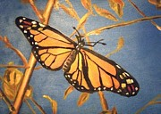 Laura Evans - Monarch Butterfly