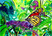 Bush Wildlife Paintings - Monarch Butterfly by Nigel Andreola