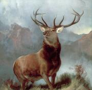 Landscape Oil Framed Prints - Monarch of the Glen Framed Print by Sir Edwin Landseer