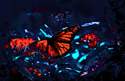 Monarch Of The Night Print by DigiArt Diaries by Vicky B Fuller