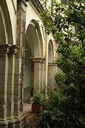 Colonial Colleges Posters - Monastery Arches Tepotzotlan Mexico Poster by John  Mitchell