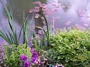 Monet Garden Giverny France Print by Chitra Ramanathan