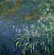 Monet: Irises By The Pond Print by Granger