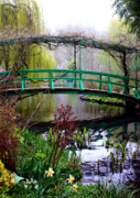 Lilies Posters - Monets Magical Bridge Poster by Susie Weaver