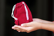 Help Tapestries - Textiles Framed Prints - Money Bag on Girls hand Framed Print by Sudarshan Vijayaraghavan