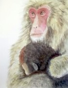 Family Love Paintings - Monkey baby and mom by Yoshiko Mishina