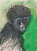 Primate Drawings - Monkey Business by Cori Solomon