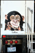 Lucky Larue Art - Monkey Business by Lucky LaRue