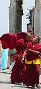 Monks' Reality Check  Print by Dagmar Ceki